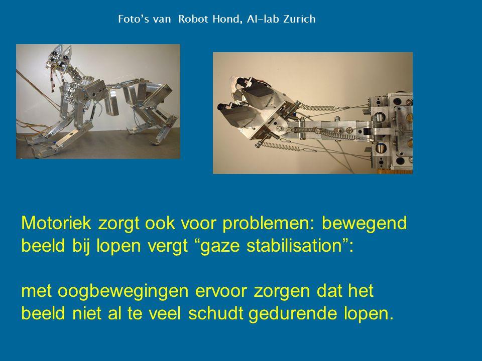 """Foto's van Robot Hond, AI-lab Zurich Motoriek zorgt ook voor problemen: bewegend beeld bij lopen vergt """"gaze stabilisation"""": met oogbewegingen ervoor"""
