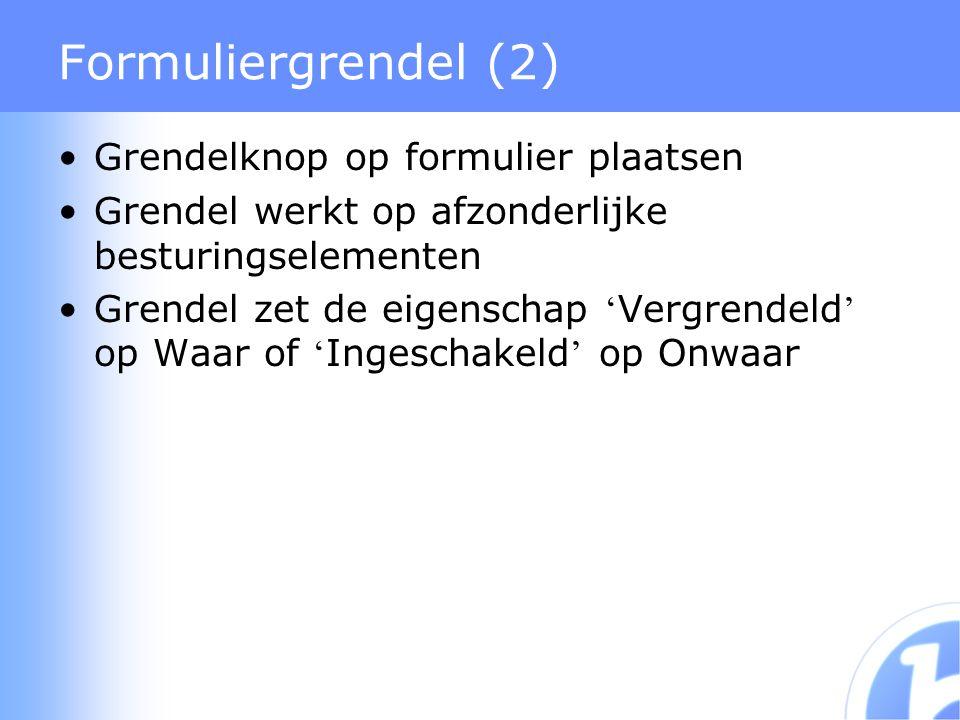 Formuliergrendel (2) Grendelknop op formulier plaatsen Grendel werkt op afzonderlijke besturingselementen Grendel zet de eigenschap ' Vergrendeld ' op Waar of ' Ingeschakeld ' op Onwaar