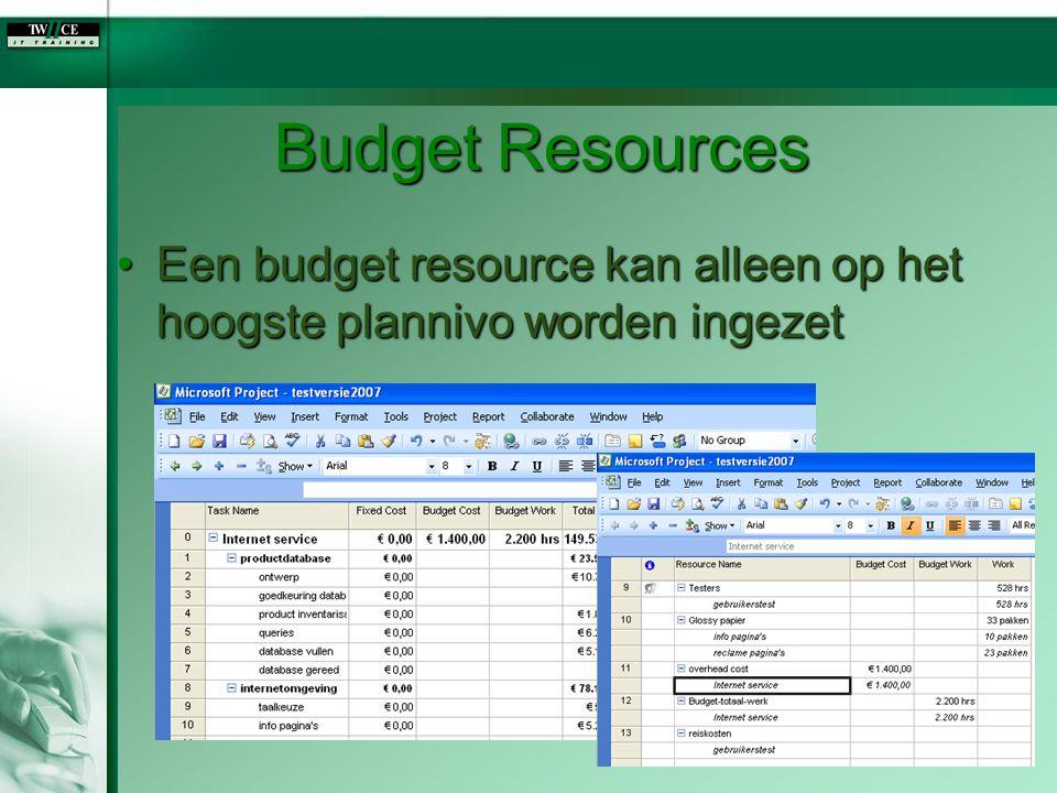 Budget Resources Een budget resource kan alleen op het hoogste plannivo worden ingezetEen budget resource kan alleen op het hoogste plannivo worden in