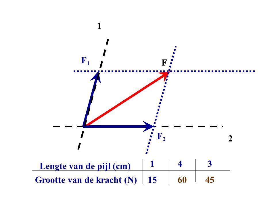 F 1 2 F1F1 F2F2 Grootte van de kracht (N) Lengte van de pijl (cm) 1 15 4 60 3 45