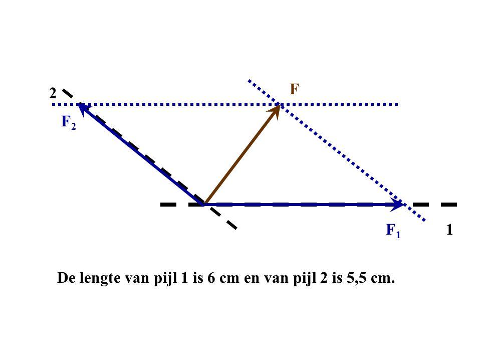 F 1 2 F2F2 F1F1 De lengte van pijl 1 is 6 cm en van pijl 2 is 5,5 cm.