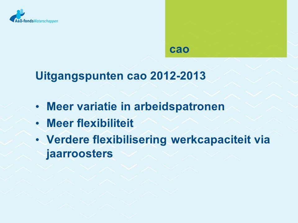 cao Uitgangspunten cao 2012-2013 Meer variatie in arbeidspatronen Meer flexibiliteit Verdere flexibilisering werkcapaciteit via jaarroosters