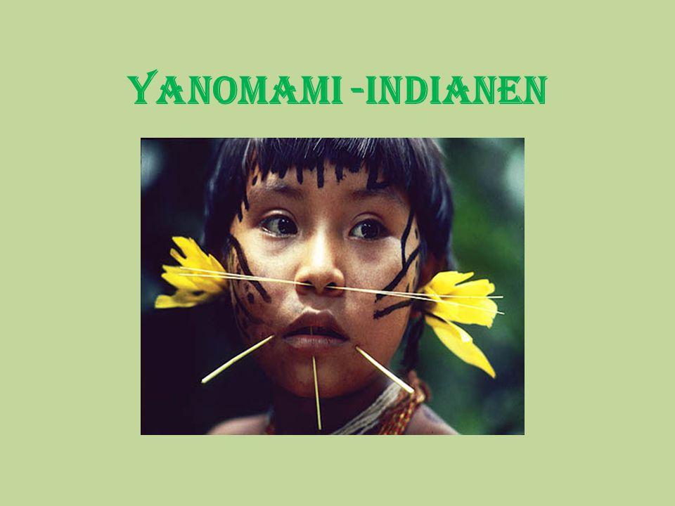 Yanomami betekent in hun taal; mensen Alle bewoners leven samen in een huis: de yano .