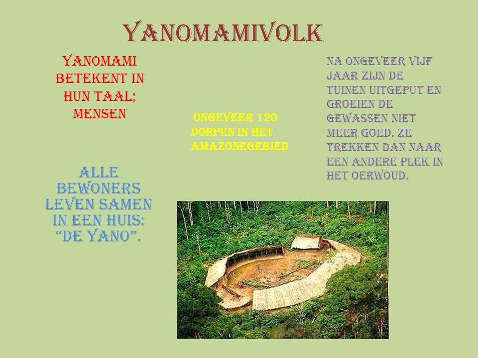 """Yanomami betekent in hun taal; mensen Alle bewoners leven samen in een huis: """"de yano"""". Ongeveer 120 dorpen in het Amazonegebied Na ongeveer vijf jaar"""