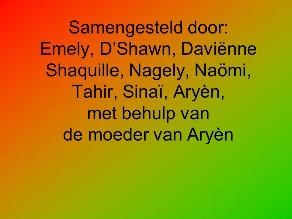 Samengesteld door: Emely, D'Shawn, Daviënne Shaquille, Nagely, Naömi, Tahir, Sinaï, Aryèn, met behulp van de moeder van Aryèn