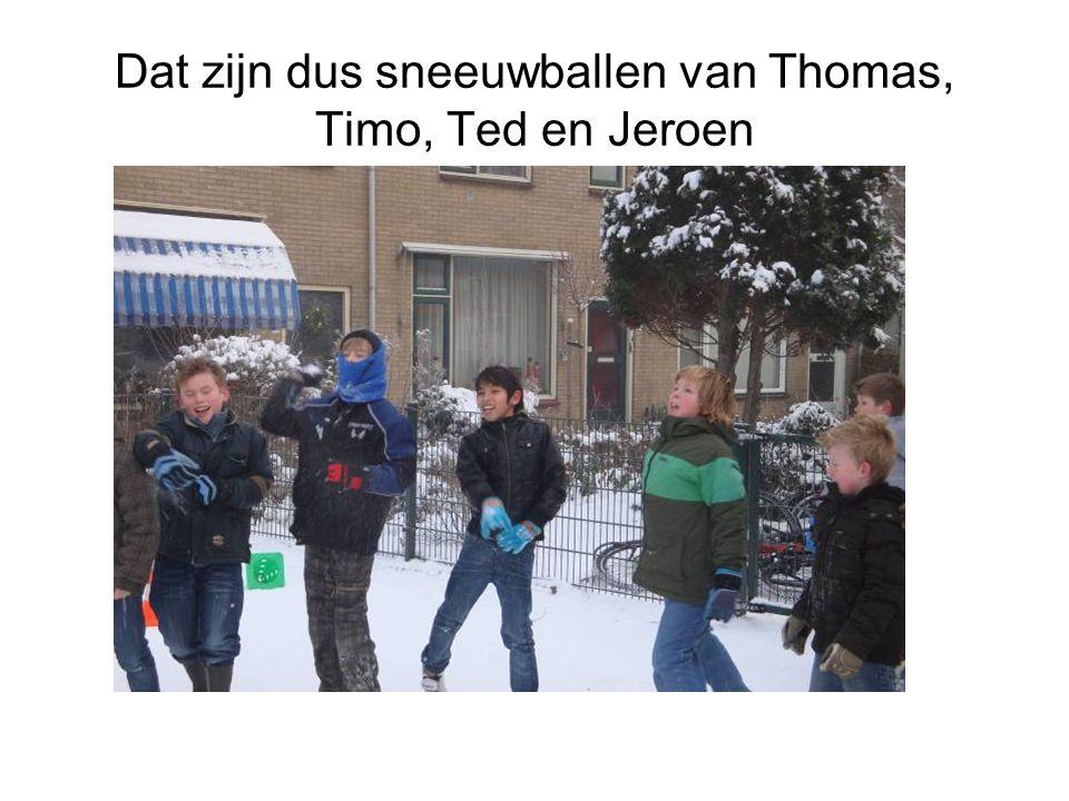 Dat zijn dus sneeuwballen van Thomas, Timo, Ted en Jeroen