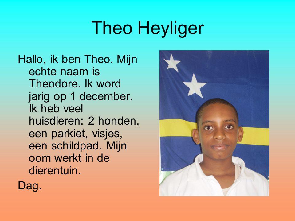 Theo Heyliger Hallo, ik ben Theo. Mijn echte naam is Theodore. Ik word jarig op 1 december. Ik heb veel huisdieren: 2 honden, een parkiet, visjes, een