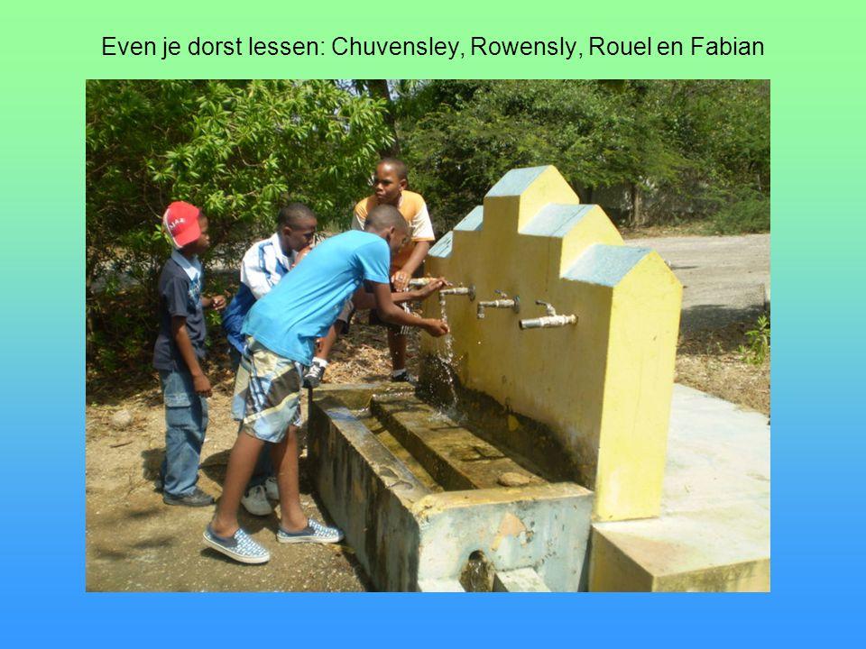 Even je dorst lessen: Chuvensley, Rowensly, Rouel en Fabian