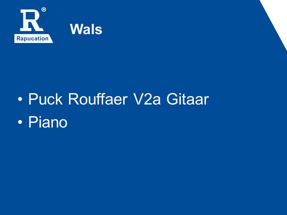 Wals Puck Rouffaer V2a Gitaar Piano