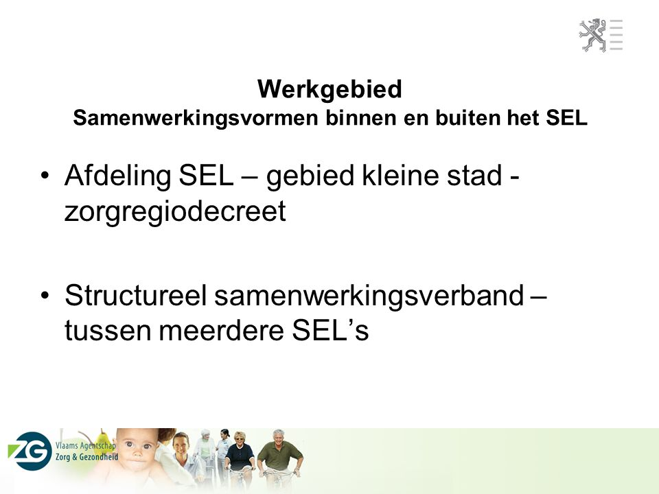 Werkgebied Samenwerkingsvormen binnen en buiten het SEL Afdeling SEL – gebied kleine stad - zorgregiodecreet Structureel samenwerkingsverband – tussen meerdere SEL's