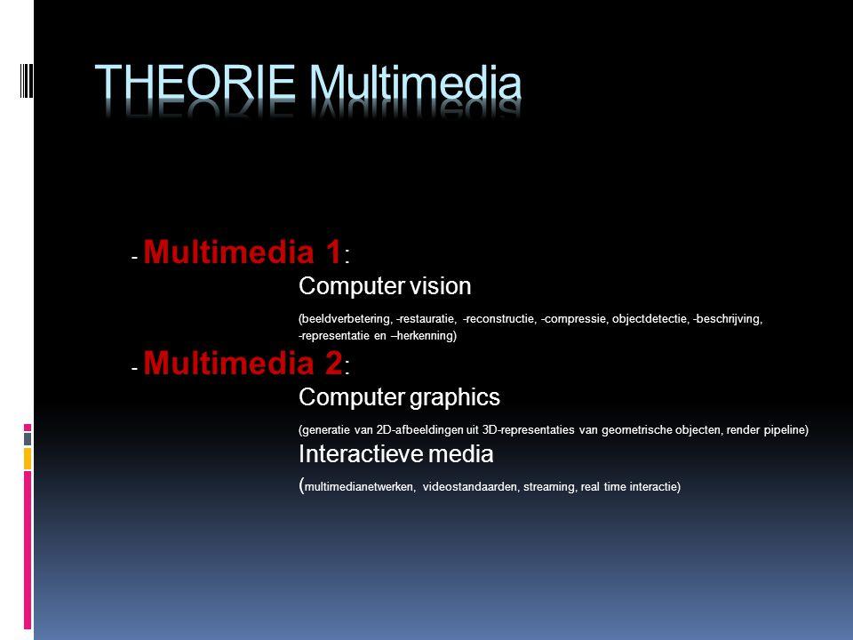 - Multimedia 1 : Computer vision (beeldverbetering, -restauratie, -reconstructie, -compressie, objectdetectie, -beschrijving, -representatie en –herkenning) - Multimedia 2 : Computer graphics (generatie van 2D-afbeeldingen uit 3D-representaties van geometrische objecten, render pipeline) Interactieve media ( multimedianetwerken, videostandaarden, streaming, real time interactie)