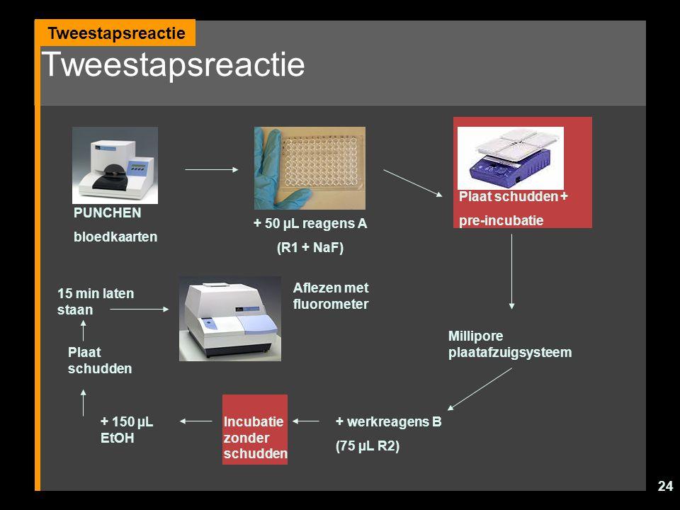 24 Tweestapsreactie PUNCHEN bloedkaarten + 50 µL reagens A (R1 + NaF) Plaat schudden + pre-incubatie Millipore plaatafzuigsysteem + werkreagens B (75
