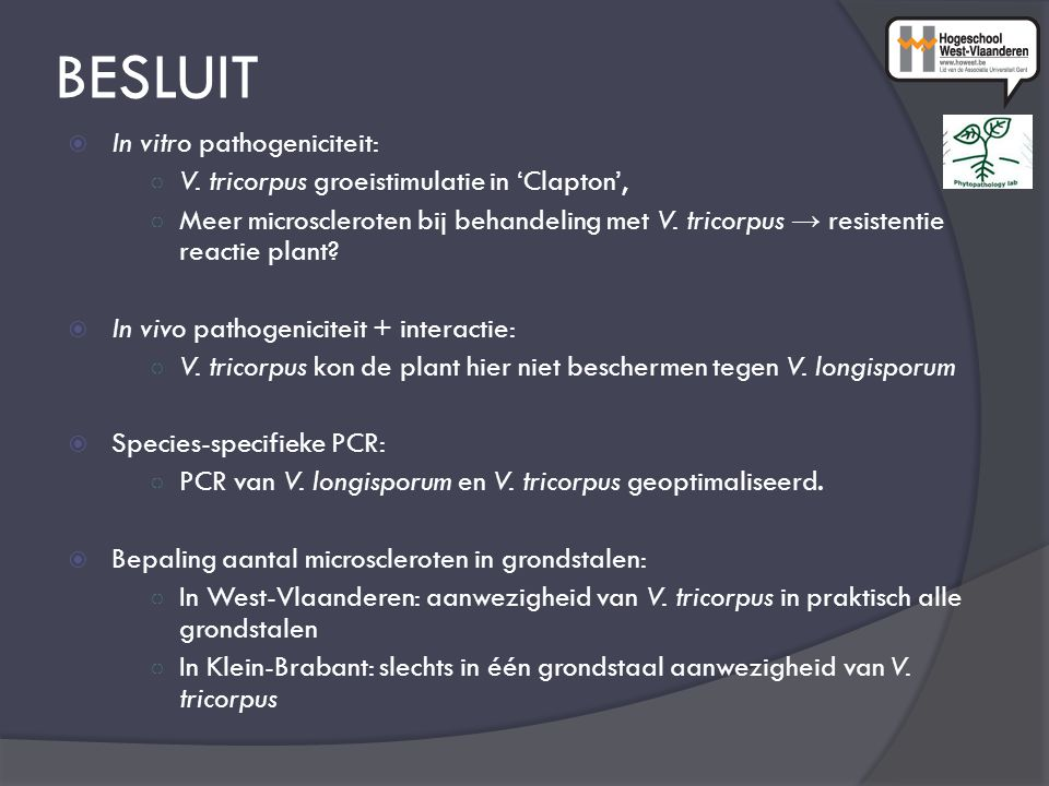BESLUIT  In vitro pathogeniciteit: ○ V.