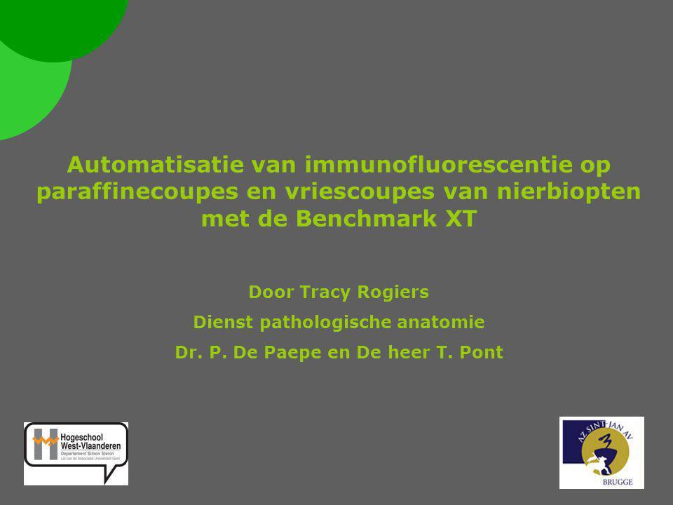  Inleiding  glomerulaire filter  Immuuncomplexen  Glomerulonefritis  Principe van de IF kleuring op de Benchmark XT  Methode  Immunofluorescentie op vriescoupes  Immunofluorescentie op paraffinecoupes  Resultaten  Staal 07B 3915  Staal 08B 1345  Staal 08B 3740  Staal 08B 4258  Conclusie 1