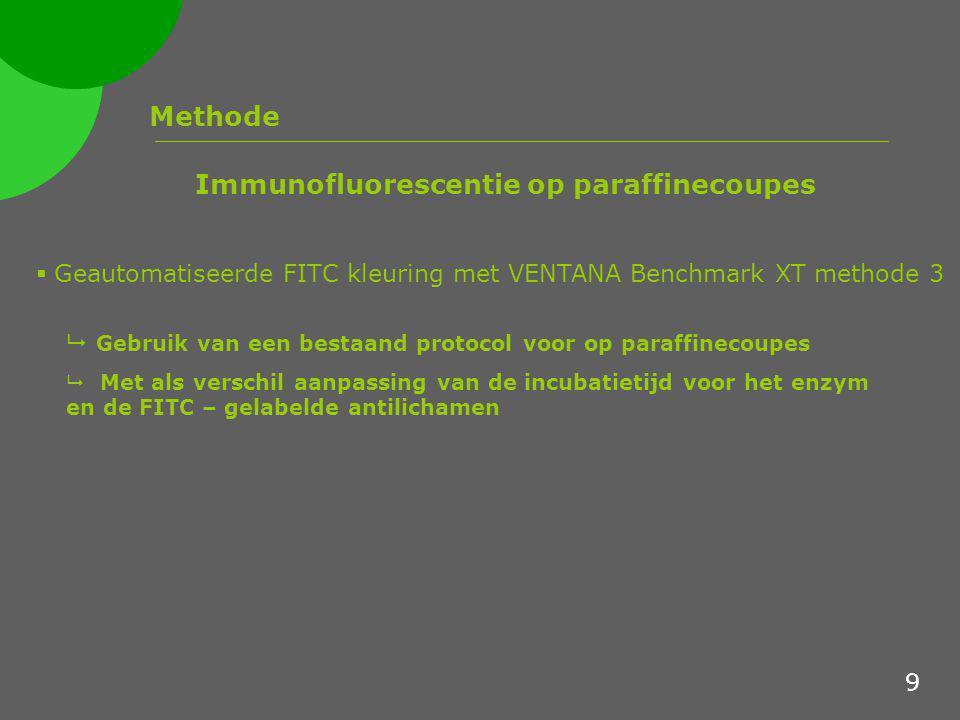 Methode  Geautomatiseerde FITC kleuring met VENTANA Benchmark XT methode 3 Immunofluorescentie op paraffinecoupes  Gebruik van een bestaand protocol voor op paraffinecoupes  Met als verschil aanpassing van de incubatietijd voor het enzym en de FITC – gelabelde antilichamen 9