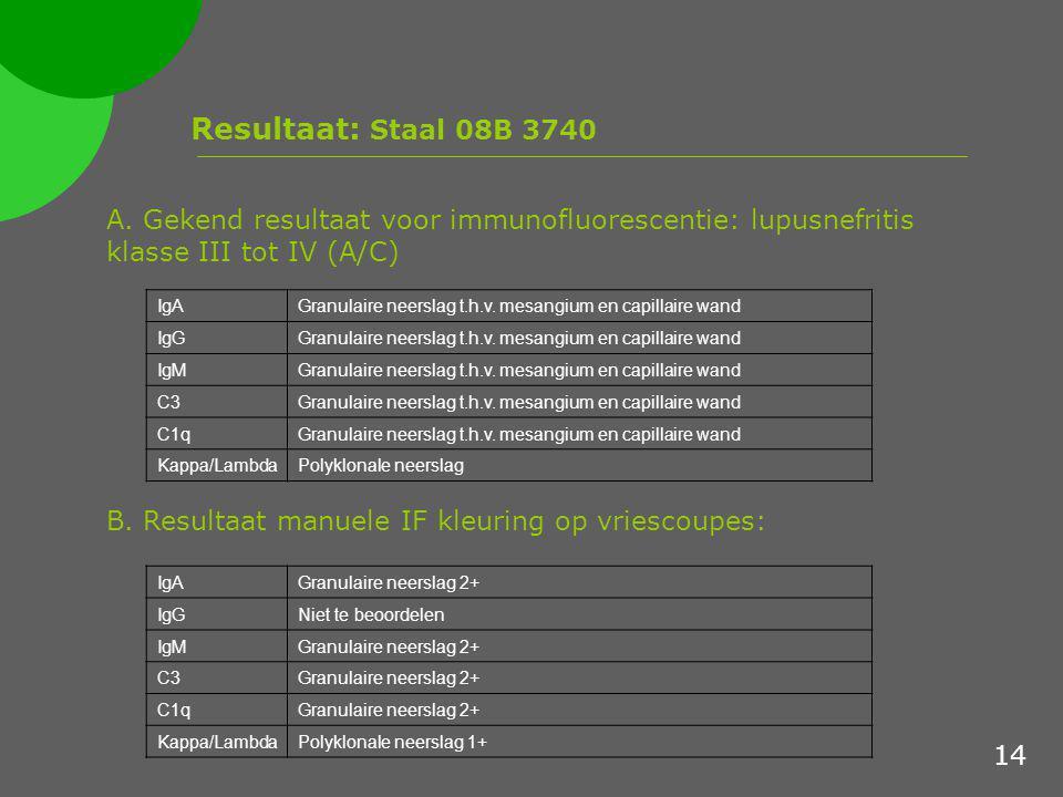 Resultaat: Staal 08B 3740 A. Gekend resultaat voor immunofluorescentie: lupusnefritis klasse III tot IV (A/C) B. Resultaat manuele IF kleuring op vrie