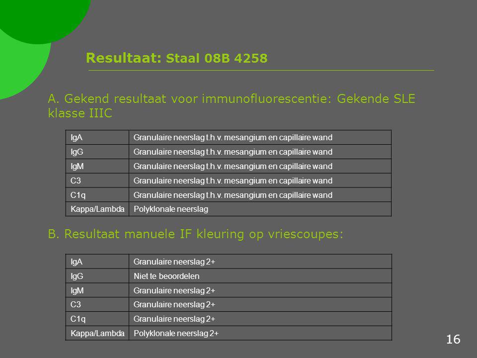 Resultaat: Staal 08B 4258 A. Gekend resultaat voor immunofluorescentie: Gekende SLE klasse IIIC B. Resultaat manuele IF kleuring op vriescoupes: IgAGr