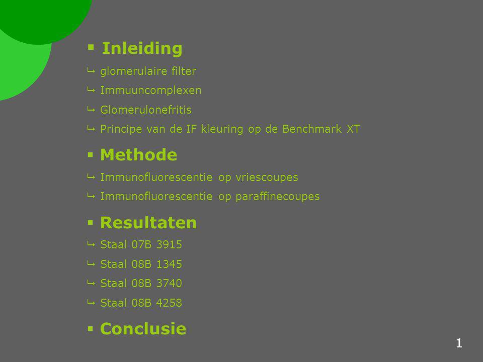 Inleiding De glomerulaire filter 3 compartimenten:  Subendotheliale ruimte en glomerulaire basale membraan  Subepitheliale compartiment  Mesangium 2