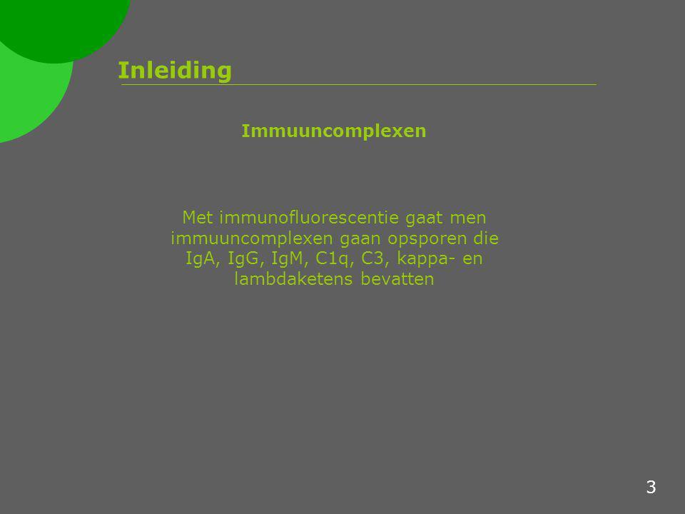 Inleiding Immuuncomplexen Met immunofluorescentie gaat men immuuncomplexen gaan opsporen die IgA, IgG, IgM, C1q, C3, kappa- en lambdaketens bevatten 3