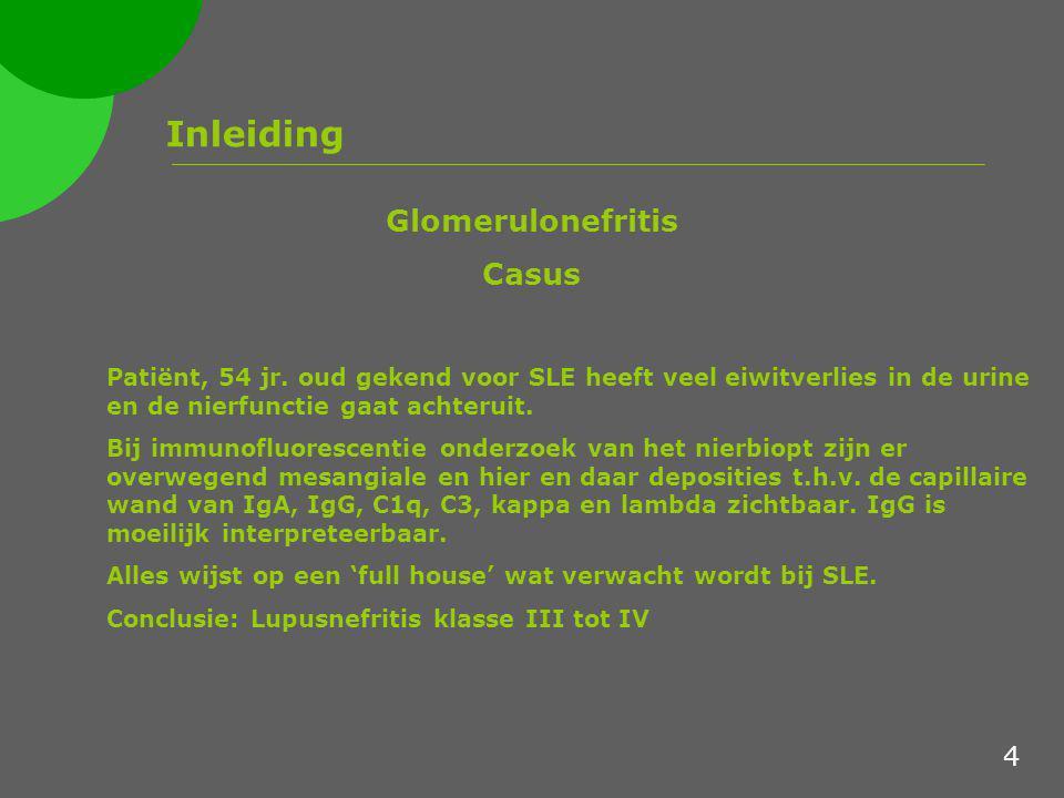 Inleiding Glomerulonefritis Casus Patiënt, 54 jr. oud gekend voor SLE heeft veel eiwitverlies in de urine en de nierfunctie gaat achteruit. Bij immuno