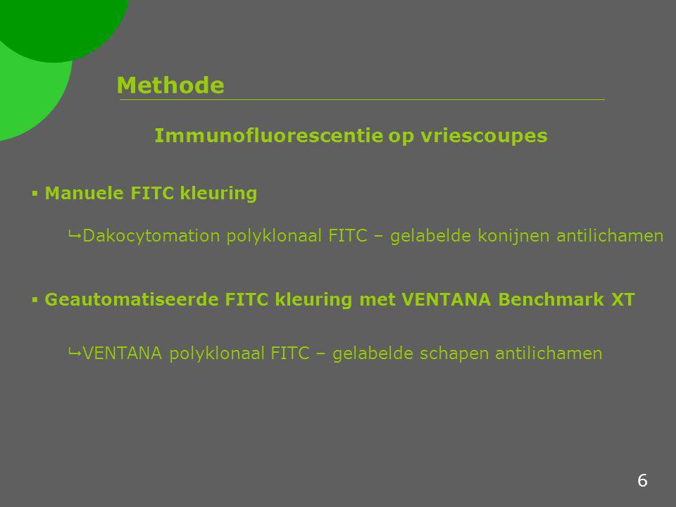 Methode Aangepaste incubatietijden van de verschillende VENTANA FITC –gelabelde primaire antilichamen FITC Primaire Antilichamen Incubatietijd Anti-C1q16 minuten Anti-C316 minuten Anti-IgA16 minuten Anti-IgG2 minuten Anti-IgM16 minuten Anti-Kappa12 minuten Anti-lambda12 minuten Immunofluorescentie op vriescoupes 7