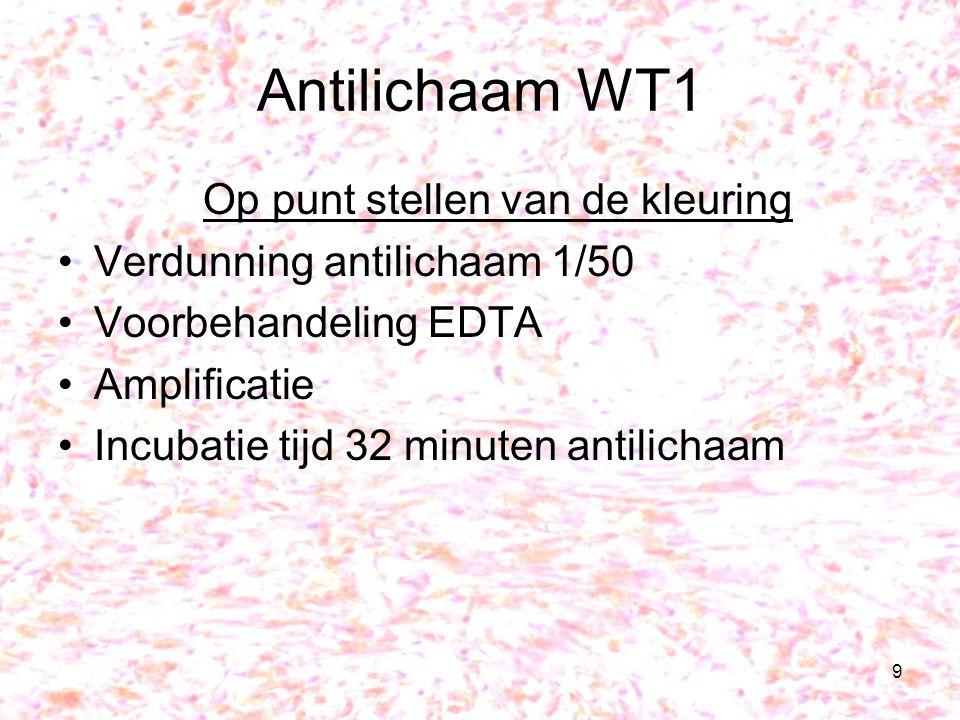 9 Antilichaam WT1 Op punt stellen van de kleuring Verdunning antilichaam 1/50 Voorbehandeling EDTA Amplificatie Incubatie tijd 32 minuten antilichaam