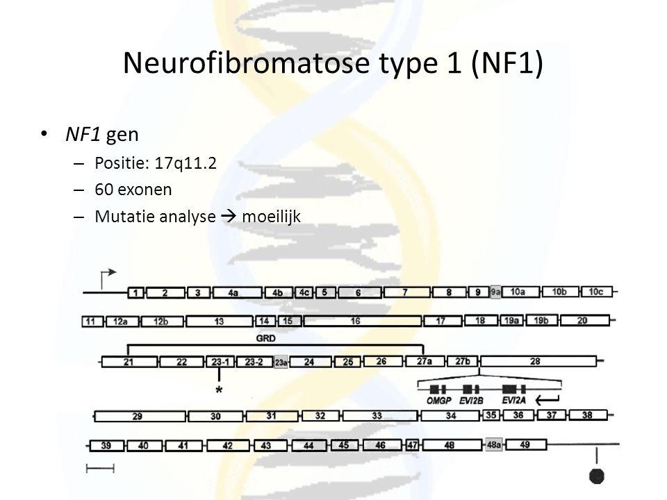 Neurofibromatose type 1 (NF1) NF1 gen – Positie: 17q11.2 – 60 exonen – Mutatie analyse  moeilijk