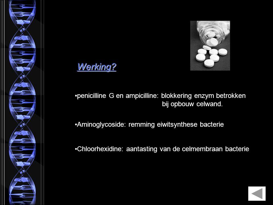 Werking? penicilline G en ampicilline: blokkering enzym betrokken bij opbouw celwand. Aminoglycoside: remming eiwitsynthese bacterie Chloorhexidine: a