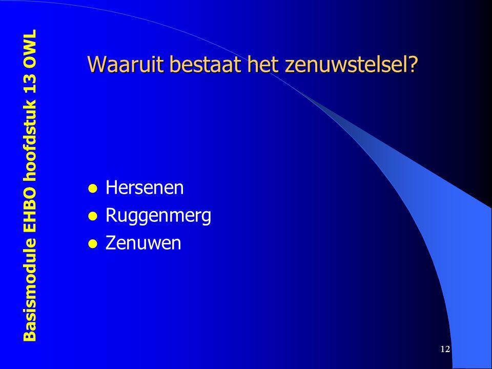 Basismodule EHBO hoofdstuk 13 OWL 12 Waaruit bestaat het zenuwstelsel? Hersenen Ruggenmerg Zenuwen