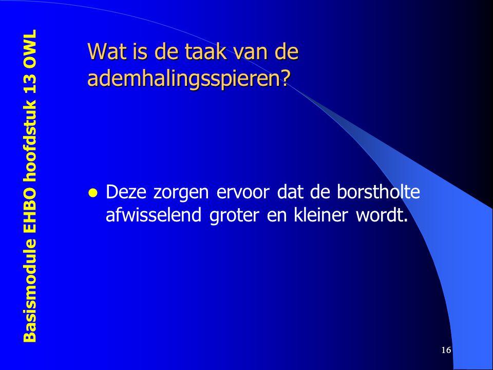 Basismodule EHBO hoofdstuk 13 OWL 16 Wat is de taak van de ademhalingsspieren? Deze zorgen ervoor dat de borstholte afwisselend groter en kleiner word