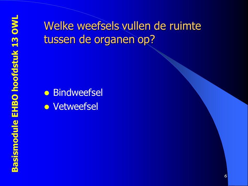 Basismodule EHBO hoofdstuk 13 OWL 6 Welke weefsels vullen de ruimte tussen de organen op? Bindweefsel Vetweefsel