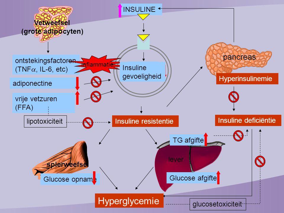 582 TYPE 2 Onvoldoende onder controle (HbA1c 7,5-10%) HbA1c gemiddeld 8,6% op: Metformine (11%) SU (14%) Metformine + SU (73%) 52 weken glargine 1dd (´s avonds) + OAD detemir 1 of 2dd + OAD Startdosering: 12 E Titratiedoel: FPG  6 mmol/L (en pre diner  6 mmol/L) Detemir 2dd indien 'prediner' PG >7 mmol/L én FPG <7 mmol/L of nachtelijke hypo's of Opzet van de studie Rosenstock et al.