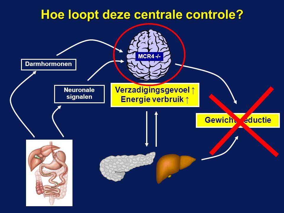 Darmhormonen Neuronale signalen Verzadigingsgevoel ↑ Energie verbruik ↑ Gewichtsreductie Hoe loopt deze centrale controle? MCR4 -/-