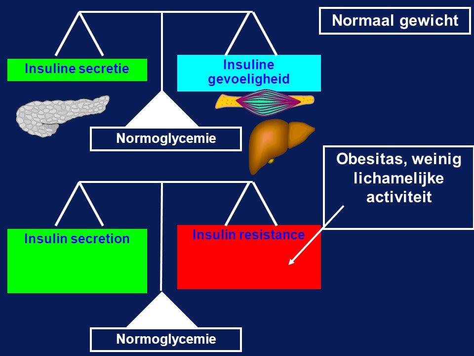 Insuline secretie Insuline gevoeligheid Insulin secretion Insulin resistance Normaal gewicht Obesitas, weinig lichamelijke activiteit Normoglycemie