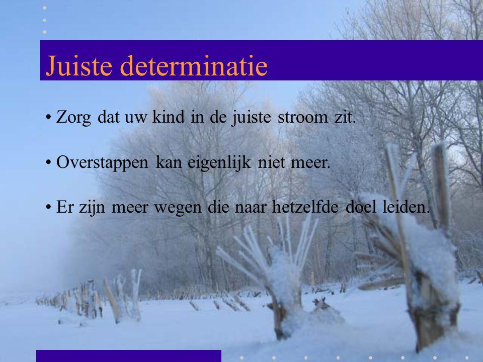 BL en KL Eerste twee jaar in Leeuwarden Derde en vierde jaar in Groningen of … Keuze voor een sector Meer praktisch gericht (minimaal 12 uur) Doorstroom naar MBO is goed