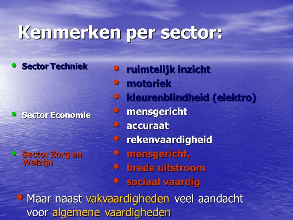 Kenmerken per sector: Sector Techniek Sector Techniek Sector Economie Sector Economie Sector Zorg en Welzijn Sector Zorg en Welzijn ruimtelijk inzicht