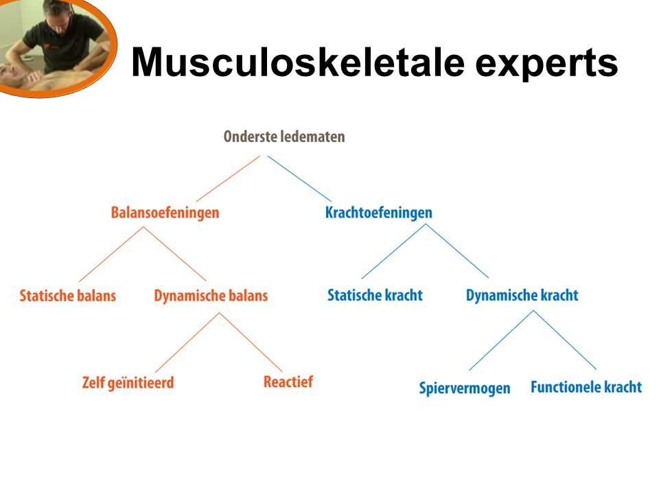 Musculoskeletale experts