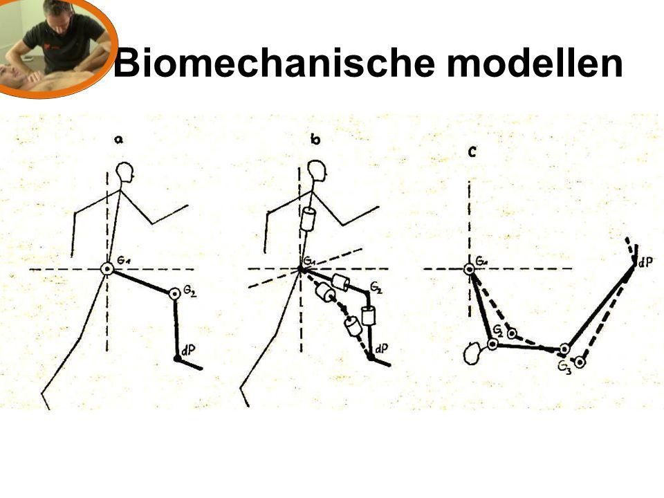 Biomechanische modellen
