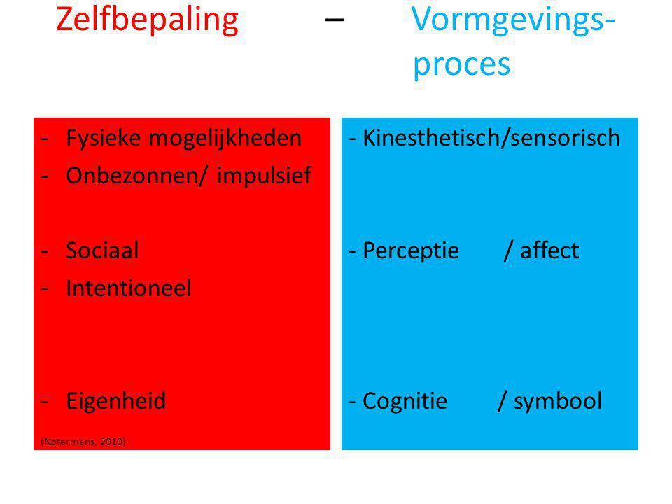 Zelfbepaling – Vormgevings- proces -Fysieke mogelijkheden -Onbezonnen/ impulsief -Sociaal -Intentioneel -Eigenheid (Notermans, 2010) - Kinesthetisch/sensorisch - Perceptie / affect - Cognitie / symbool