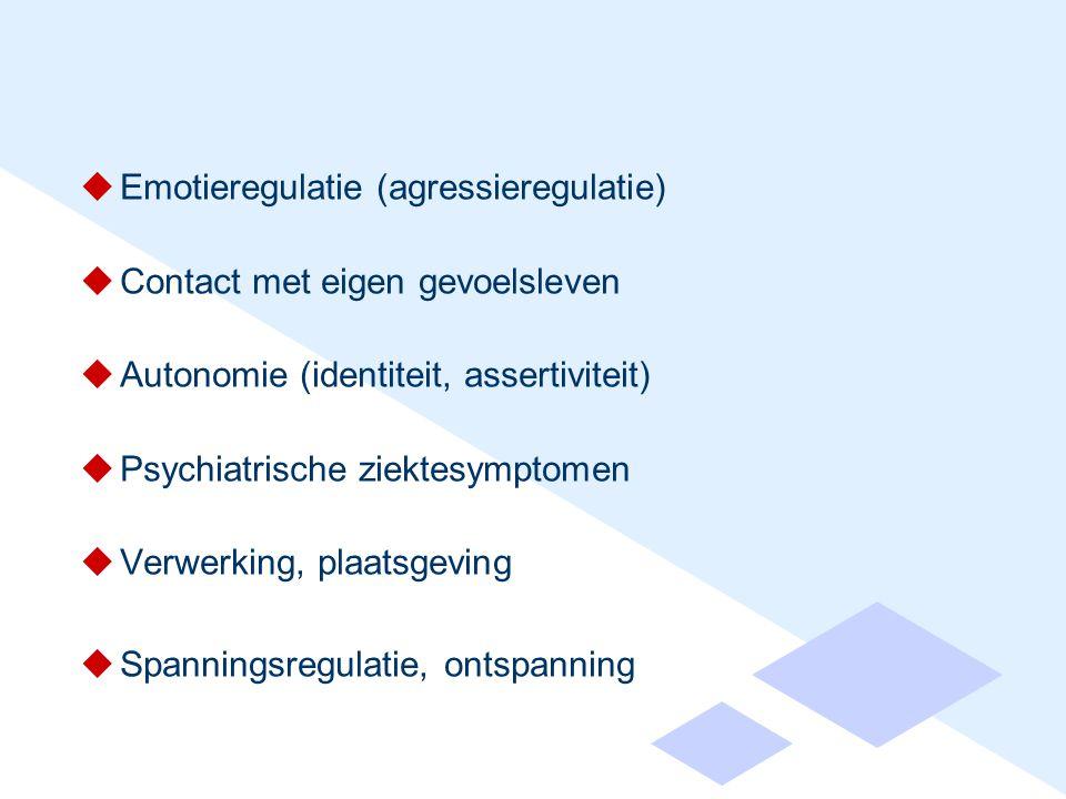  Emotieregulatie (agressieregulatie)  Contact met eigen gevoelsleven  Autonomie (identiteit, assertiviteit)  Psychiatrische ziektesymptomen  Verwerking, plaatsgeving  Spanningsregulatie, ontspanning