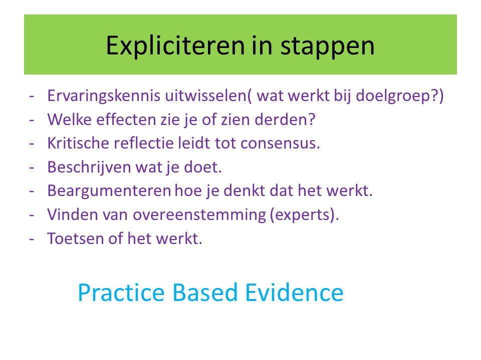 Expliciteren in stappen -Ervaringskennis uitwisselen( wat werkt bij doelgroep?) -Welke effecten zie je of zien derden? -Kritische reflectie leidt tot