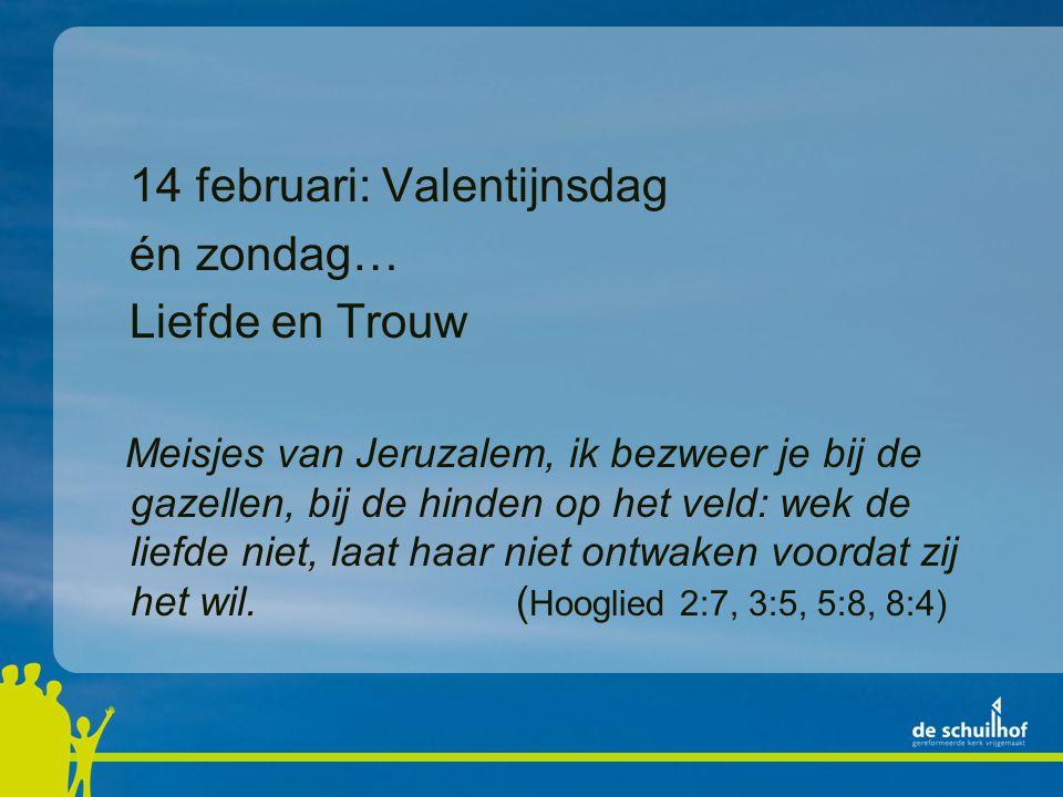 14 februari: Valentijnsdag én zondag… Liefde en Trouw Meisjes van Jeruzalem, ik bezweer je bij de gazellen, bij de hinden op het veld: wek de liefde niet, laat haar niet ontwaken voordat zij het wil.( Hooglied 2:7, 3:5, 5:8, 8:4)