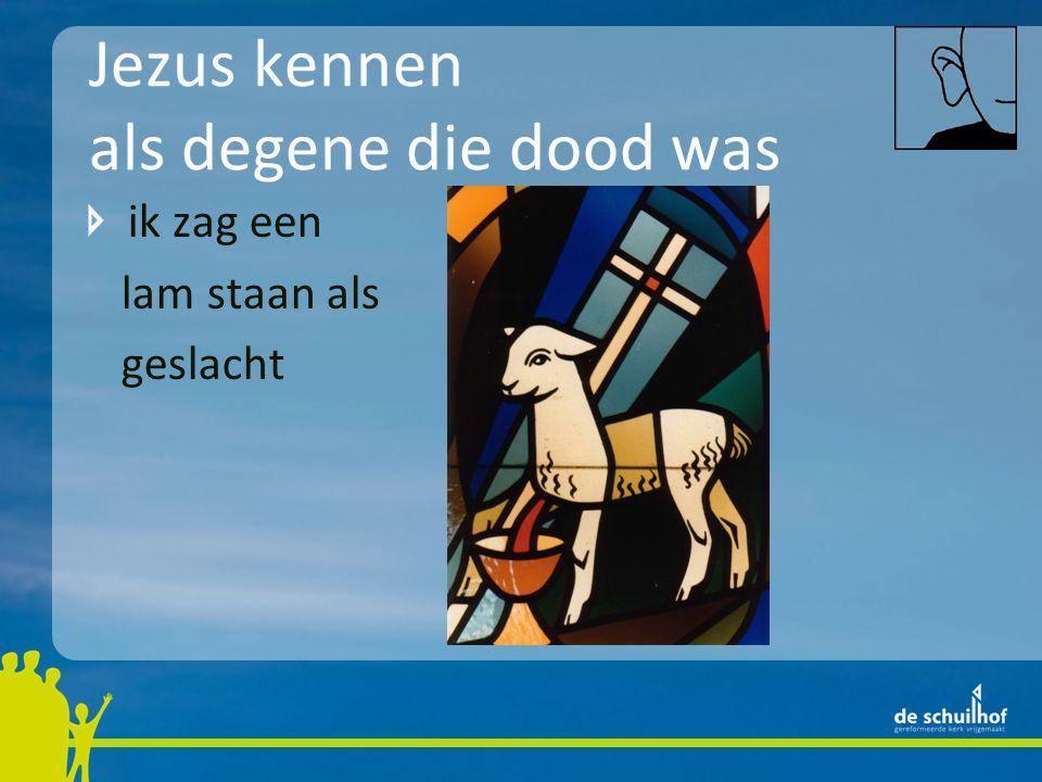 Jezus kennen als degene die dood was ik zag een lam staan als geslacht bemoediging: voor mensen die met de dood in hun schoenen lopen is het fijn te weten dat Jezus de dood om zijn vinger heeft gewonden
