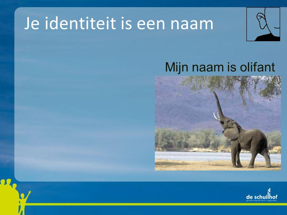 Mijn naam is olifant