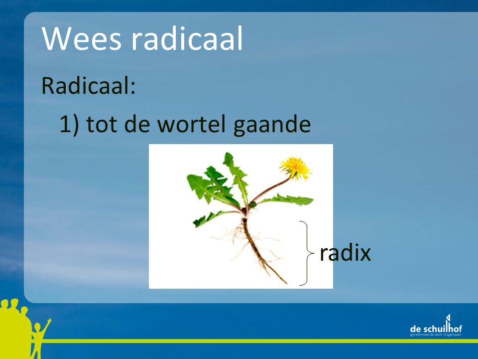Wees radicaal Radicaal: 1) tot de wortel gaande radix