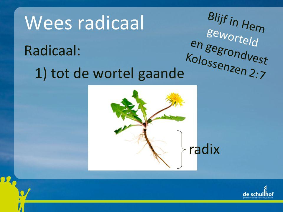Wees radicaal Radicaal: 1) tot de wortel gaande radix Blijf in Hem geworteld en gegrondvest Kolossenzen 2:7