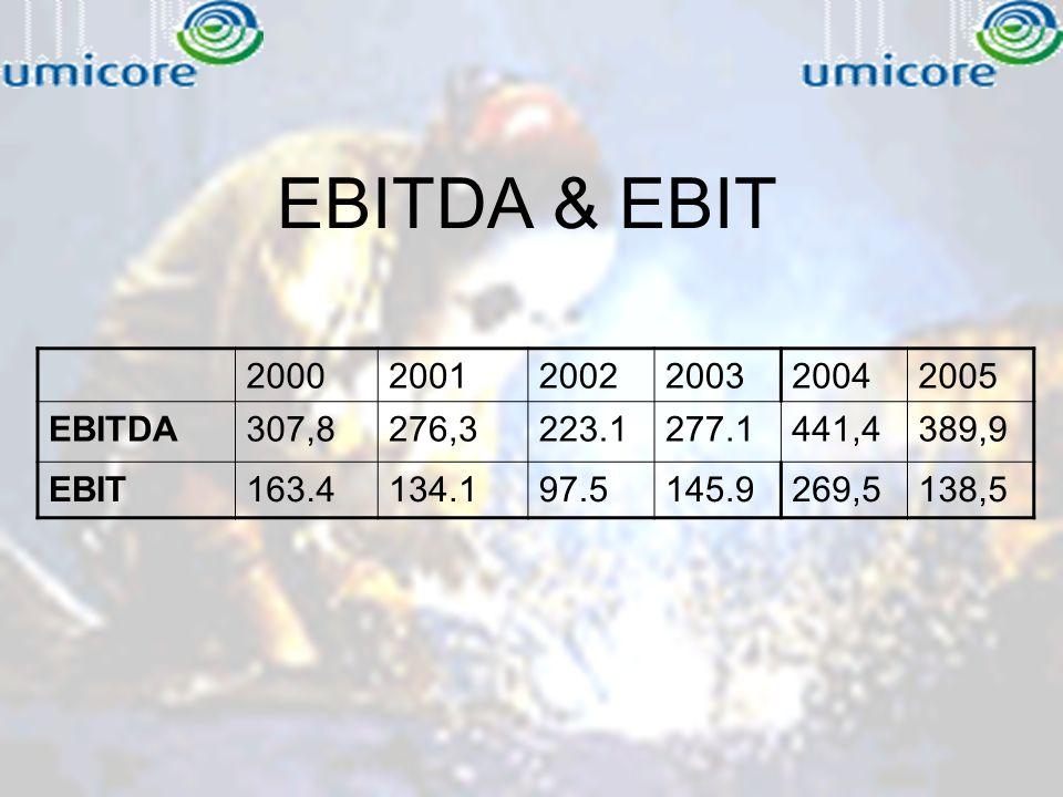 EBITDA & EBIT 200020012002200320042005 EBITDA307,8276,3223.1277.1441,4389,9 EBIT163.4134.197.5145.9269,5138,5