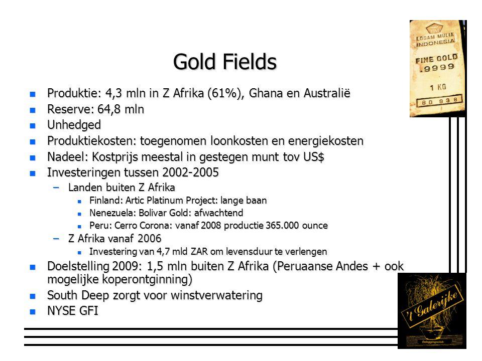 Gold Fields n Produktie: 4,3 mln in Z Afrika (61%), Ghana en Australië n Reserve: 64,8 mln n Unhedged n Produktiekosten: toegenomen loonkosten en energiekosten n Nadeel: Kostprijs meestal in gestegen munt tov US$ n Investeringen tussen 2002-2005 –Landen buiten Z Afrika n Finland: Artic Platinum Project: lange baan n Nenezuela: Bolivar Gold: afwachtend n Peru: Cerro Corona: vanaf 2008 productie 365.000 ounce –Z Afrika vanaf 2006 n Investering van 4,7 mld ZAR om levensduur te verlengen n Doelstelling 2009: 1,5 mln buiten Z Afrika (Peruaanse Andes + ook mogelijke koperontginning) n South Deep zorgt voor winstverwatering n NYSE GFI