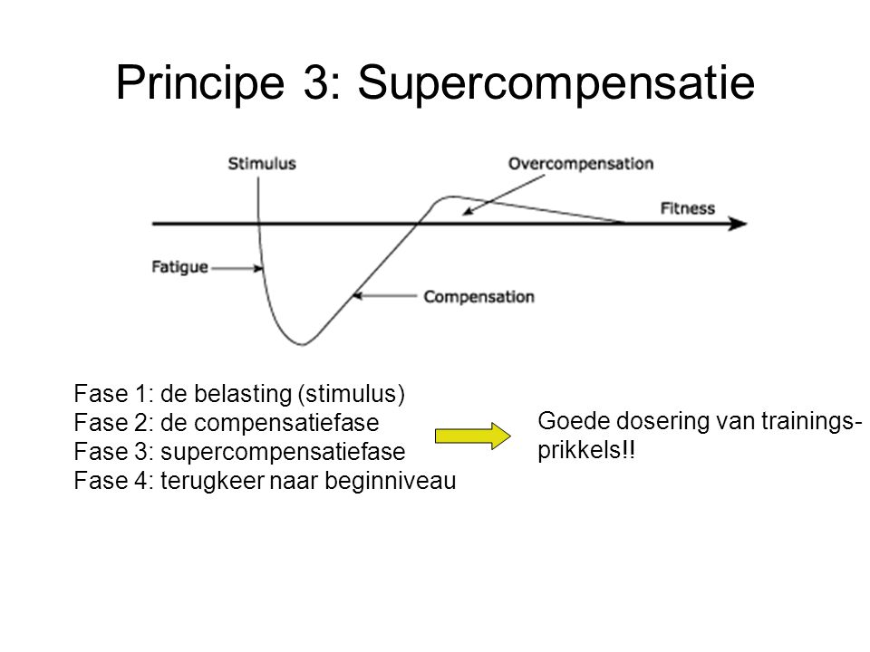 Principe 3: Supercompensatie Fase 1: de belasting (stimulus) Fase 2: de compensatiefase Fase 3: supercompensatiefase Fase 4: terugkeer naar beginniveau Goede dosering van trainings- prikkels!!