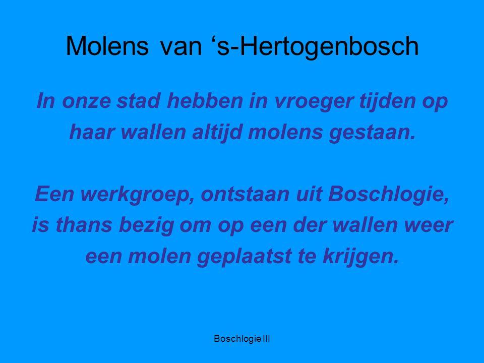 Boschlogie III Molens van 's-Hertogenbosch In onze stad hebben in vroeger tijden op haar wallen altijd molens gestaan.
